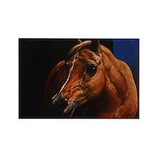Arabian Horse Rectangle Magnet