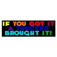 Rainbow Colors Bumper Car Sticker