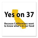 Yes on 37 - Square Car Magnet 3