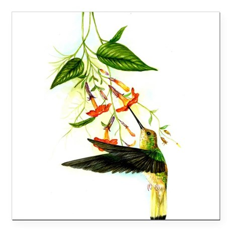 "hummingbird Square Car Magnet 3"" x 3"""