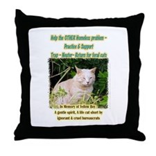 The Other Homeless Problem Throw Pillow