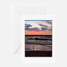 Sunset, seagull, photo! Greeting Card