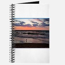 Sunset, seagull, photo! Journal