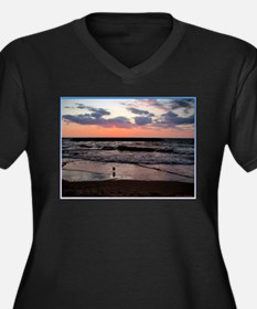 Sunset, seagull, photo! Women's Plus Size V-Neck D