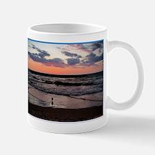 Sunset, seagull, photo! Mug