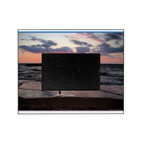Sunset, seagull, photo! Picture Frame