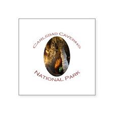 Carlsbad Caverns National Park...Time Machine Squa