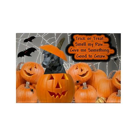 Black Lab Halloween Rectangle Magnet (10 pack)