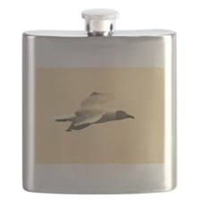 sepia grey headed gull kenya collection Flask