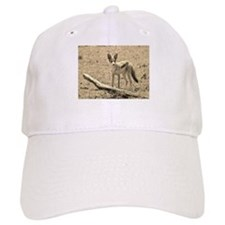 sepia silver backed jackal kenya collection Baseball Cap