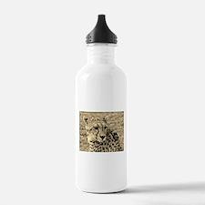 sepia scopey cheetah kenya collection Water Bottle