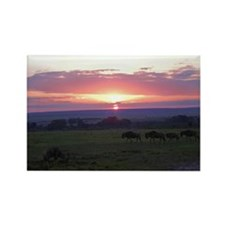 maasai mara sunset kenya collection Rectangle Magn
