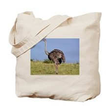 female ostrich kenya collection Tote Bag