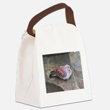 speckled pigeon kenya collection Canvas Lunch Bag