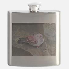 speckled pigeon kenya collection Flask