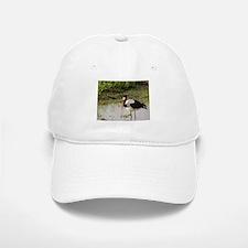 saddle billed stork kenya collection Baseball Baseball Cap