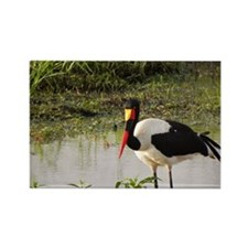 saddle billed stork kenya collection Rectangle Mag