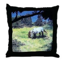 On Roark Road Throw Pillow