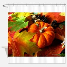 .elements of autumn. Shower Curtain