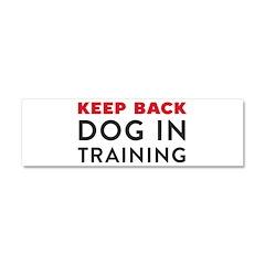 Dog in Training Car Magnet 10 x 3