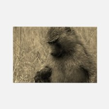 sepia thoughtful baboon Rectangle Magnet