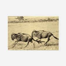 sepia wildebeest crossing kenya collection Rectang