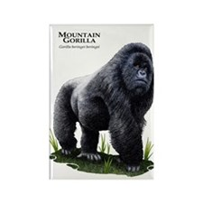 Mountain Gorilla Rectangle Magnet
