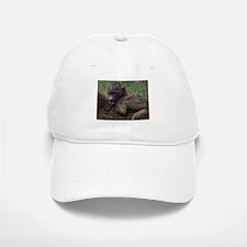baboon on back kenya collection Baseball Baseball Cap