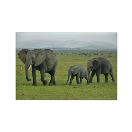 mara elephant family kenya collection Rectangle Ma