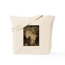 oregon caves Tote Bag