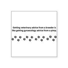 "Getting Veterinary Advice Square Sticker 3"" x 3"""