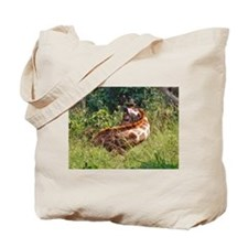 rothschild giraffe in grass kenya collection Tote