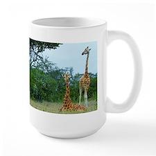 rothschild giraffe pair at soysambu kenya collecti