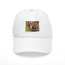 rothschild giraffe looking kenya collection Baseball Cap