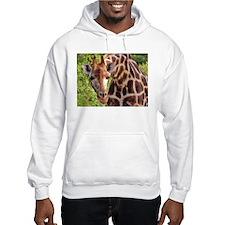 rothschild giraffe looking kenya collection Hoodie