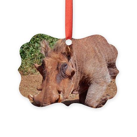 warthog in nairobi kenya collection Picture Orname