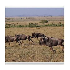 wildebeest running kenya collection Tile Coaster