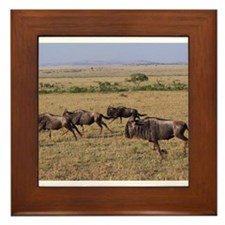 wildebeest running kenya collection Framed Tile