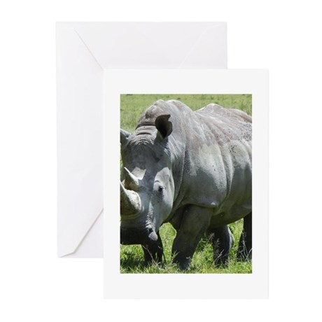 white rhino mother at nakuru kenya collection Gree