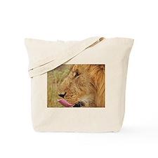 lion closeup kenya collection Tote Bag