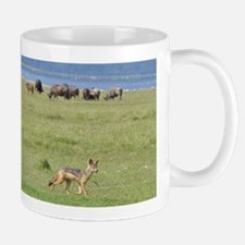 silverbacked jackal nakuru kenya collection Mug