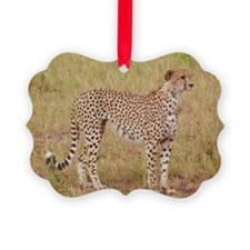 cheetah brother kenya collection Ornament