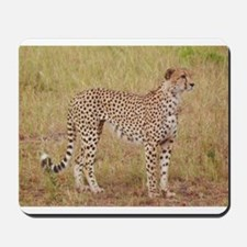 cheetah brother kenya collection Mousepad