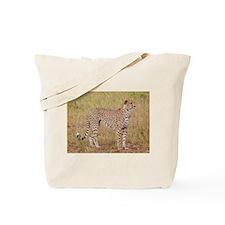 cheetah brother kenya collection Tote Bag