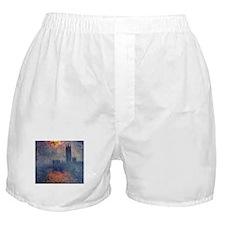 Boldly Going... Boxer Shorts