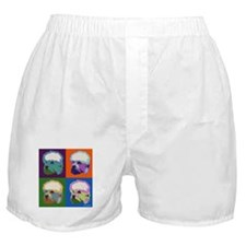 Dandie Dinmont Pop Art Boxer Shorts