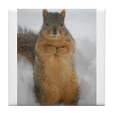 Squirrel Love Tile Coaster