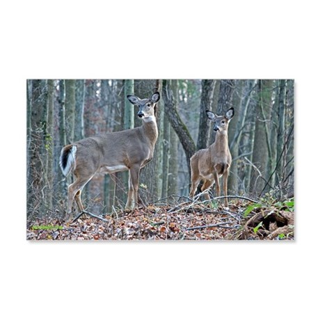 Doe with fawn 20x12 Wall Decal