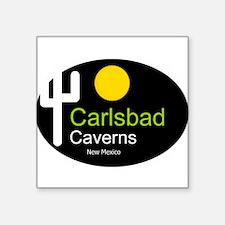 carlsbad caverns t shirt new mexico truck stop Squ