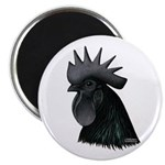 "Ayam Ceymani Rooster 2.25"" Magnet (10 pack)"